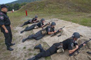 МВС, ДПСУ та СБУ у відсічі збройної агресії