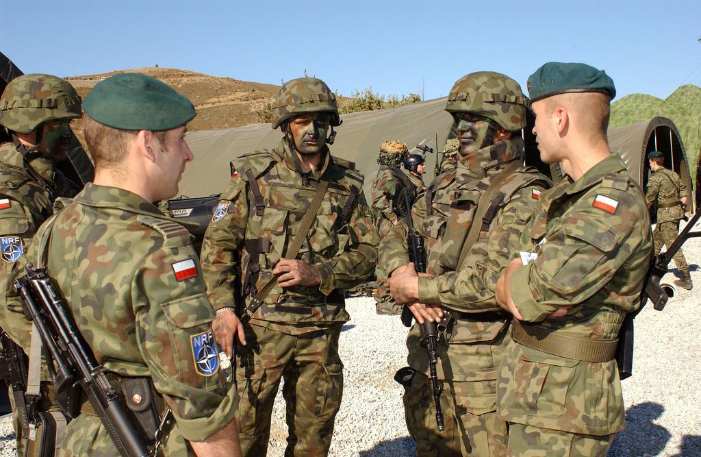 Навчання збройних сил Польщі «Анаконда-2012»