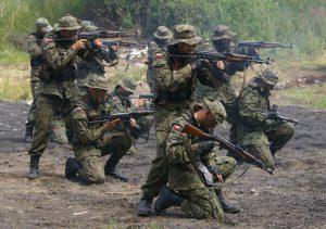 Поляки поїдуть в Малі