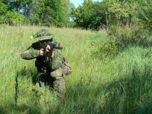 До питання військової організації нової України