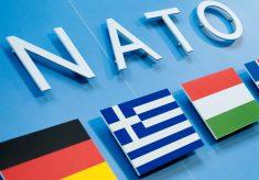 У Балтії завершено формування 4-х багатонаціональних груп НАТО