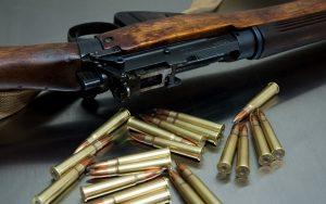 Петиція про врегулювання порядку обігу зброї