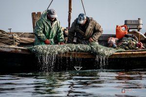 Росія затримала українських рибалок у західній частині Азовського моря