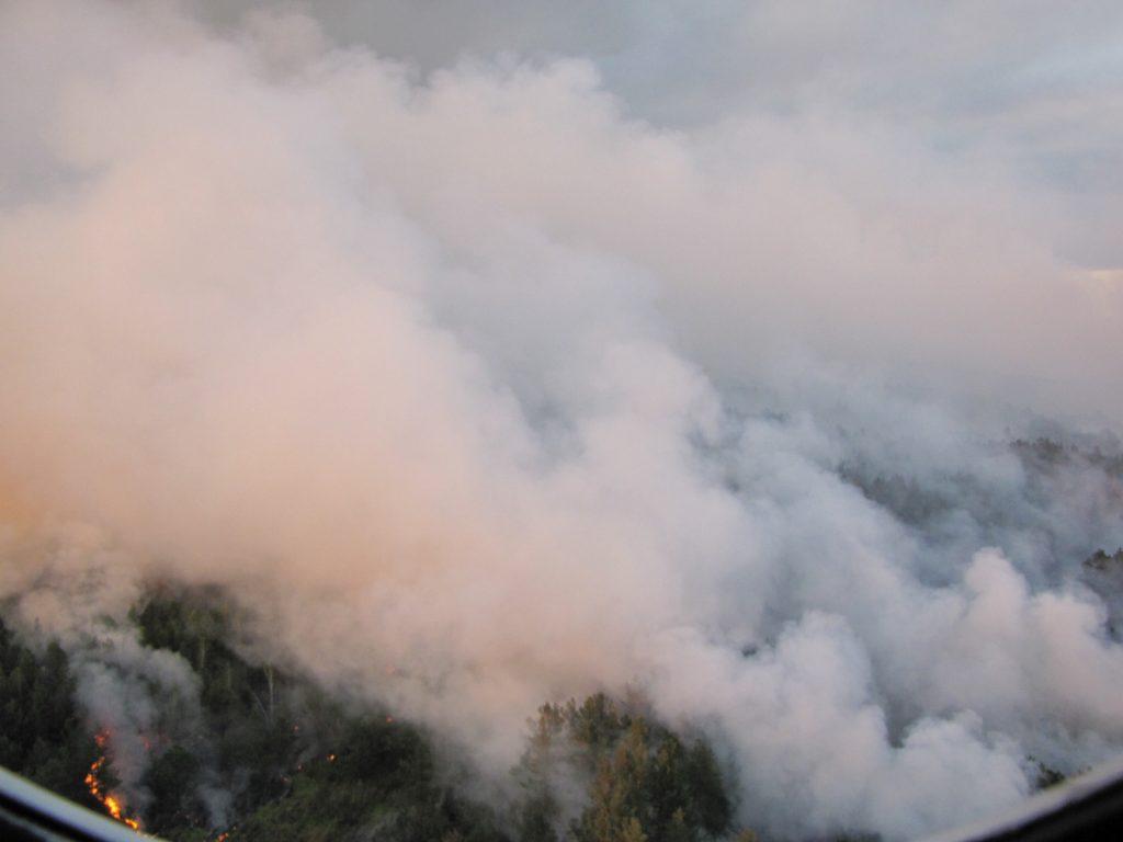 Масштаби пожежі в Зоні відчуження