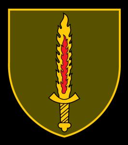 Патч ССО Литви