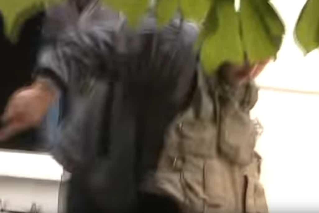 Бойовик в бронежилеті тікає з вікна першого поверху, на якому цивільні виламали ґрати. © права належать автору оригінального відео.