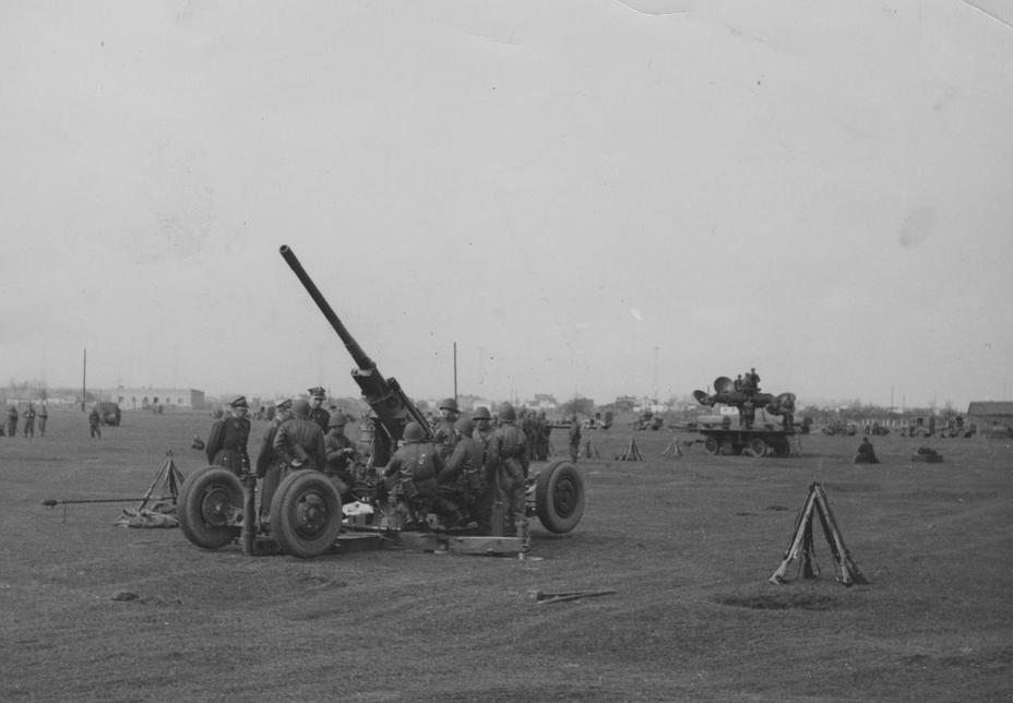 Польська зенітна гармата wz.36 на навчаннях