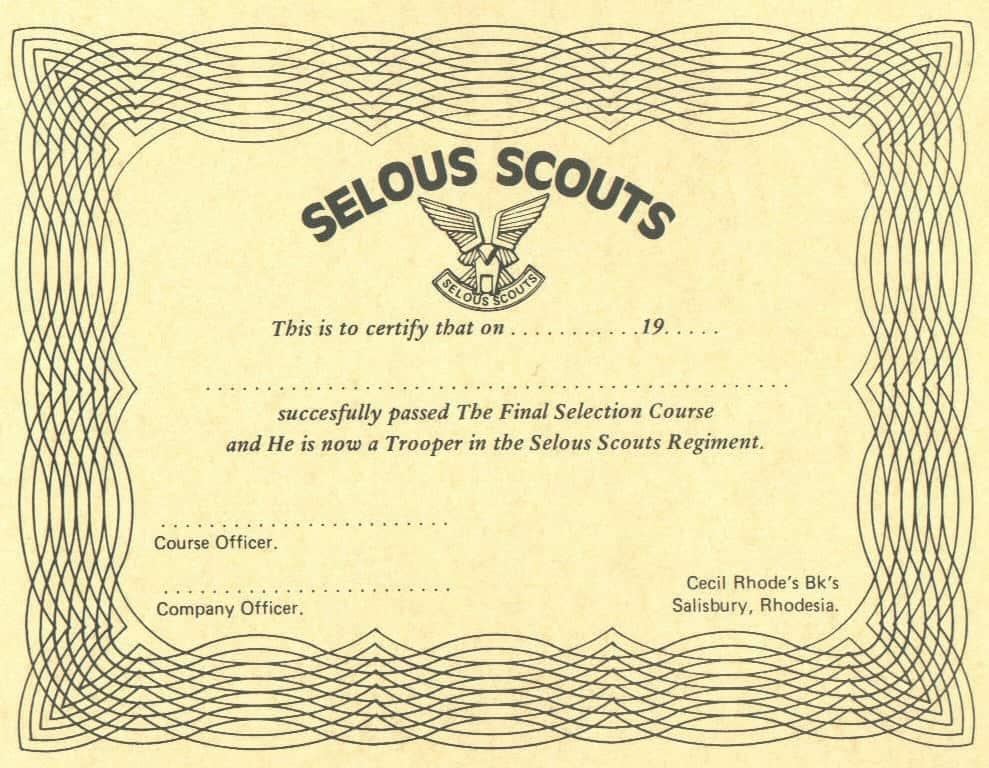 Ось такий сертифікат отримував кожен, хто завершив курс відбору. Для кожного з Скаутів цей шматок паперу був дорожчим, за золото.