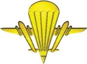 Символ аеромобільних військ
