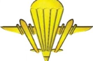 Аеромобільні війська